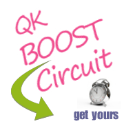 boostcircuitpink180x180 Need an Easy Daily Housework Schedule to Keep You On Track?