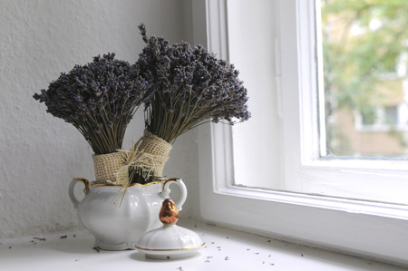 lavender home scent Using Essential Oils to Clean House