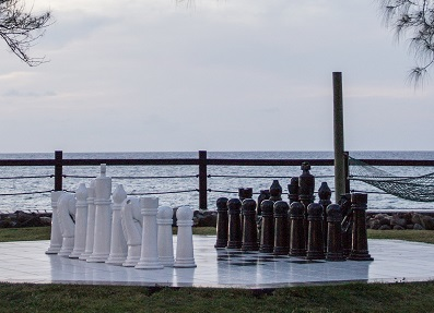 chessonthebeachsm Now Is The Time   How To Start Your New Years Revolution